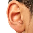 ear-02