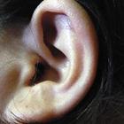 ear-woman-ear-female-01